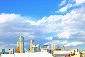 写真絵 / 新宿 高層ビル|Nikon D600+Ai-S Nikkor 50mm f1.2+Capture NX-D+Gimp
